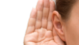 ear_PNG35705.png