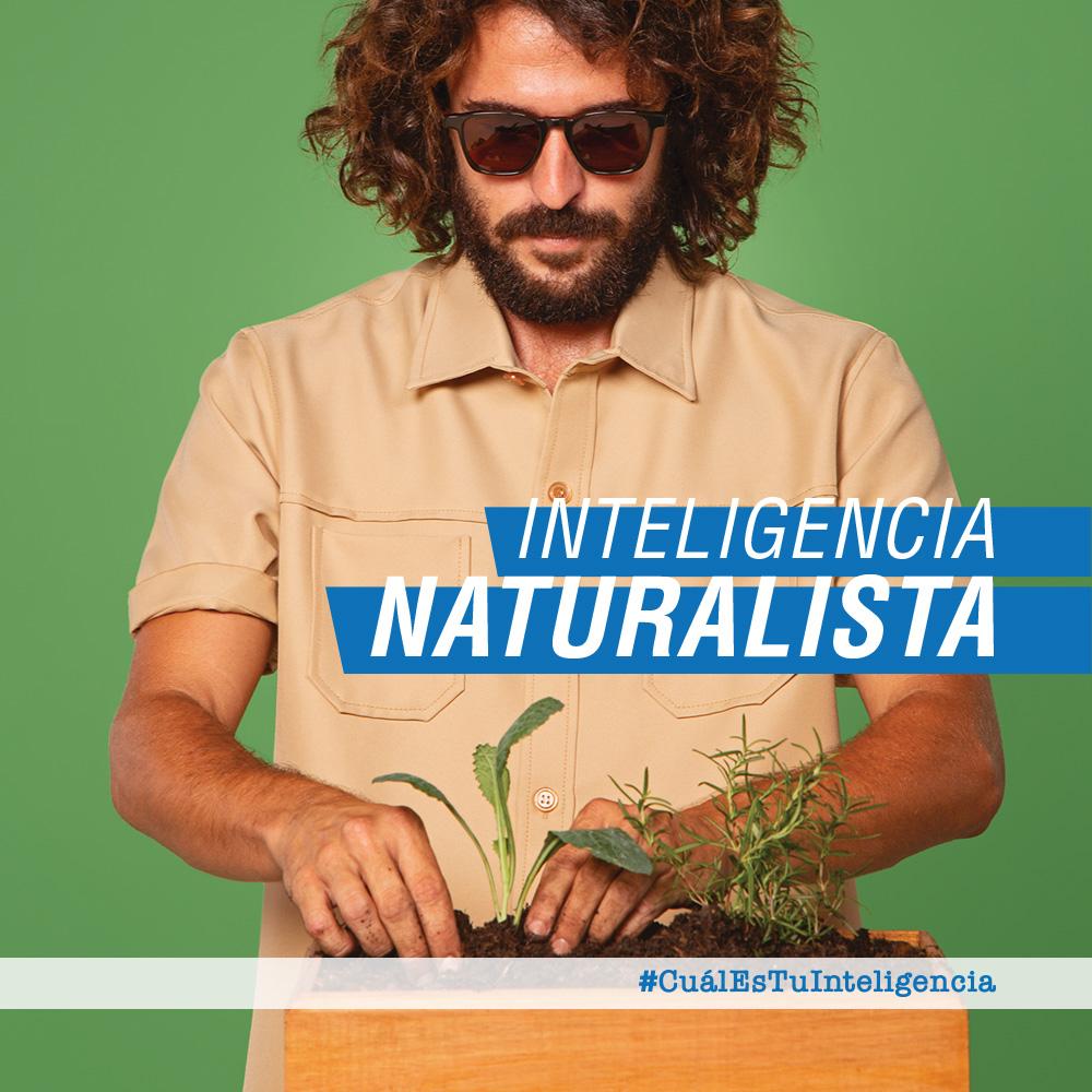 INTELIGENCIA NATURALISTA