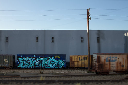 Bones 50' Chessie HO Scale Boxcar
