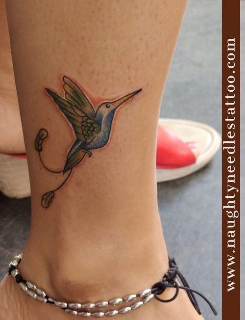 Kingfisher bird