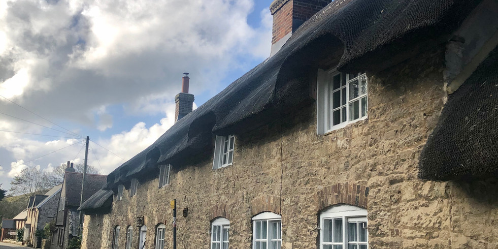 Thatched cottages in the village