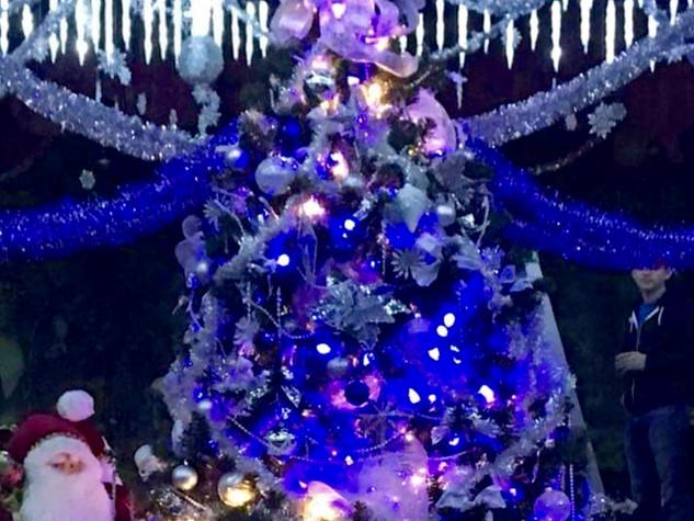 thecristmas tree.jpg