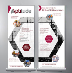 Portfolio_RollUp_Aptitude_Formation