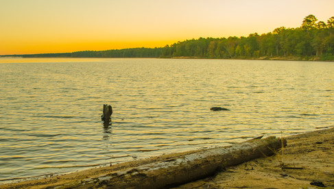 Jordan Lake Sunrise 3 - no WM.jpg