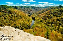 Bandy Creek-0256.jpg