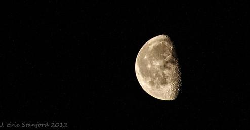 Moonlight 8x10.jpg