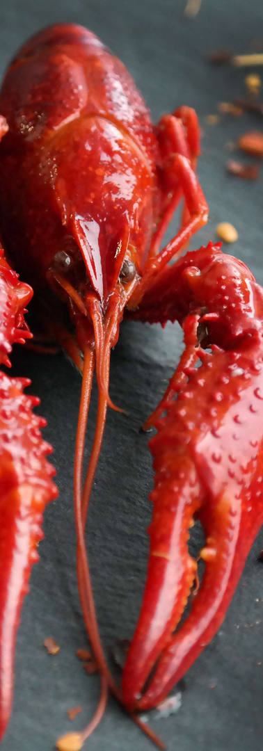 boiled-crayfish-4028132.jpg