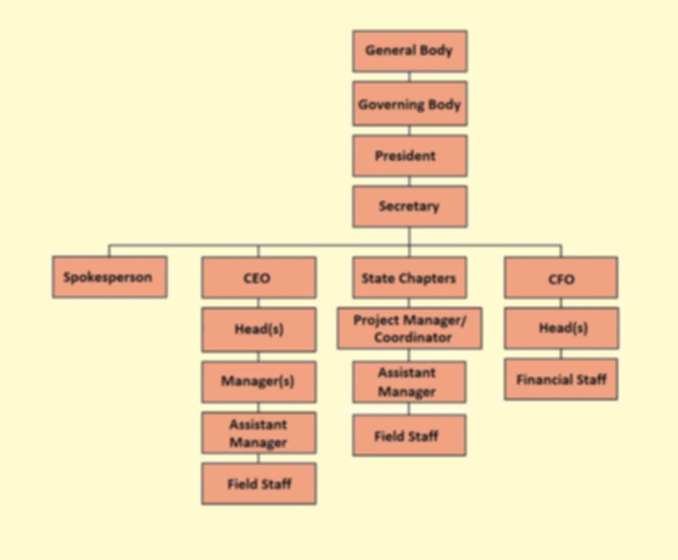 organizational chart-gsf.jpg