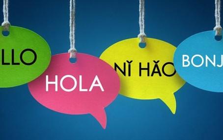 Conheça o gerenciamento do programa de idiomas para empresas