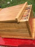 Sasasafras Bee Hive.JPG
