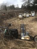 Bee Bike and Trailer.HEIC