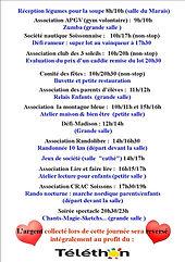 Téléthon programme.jpg