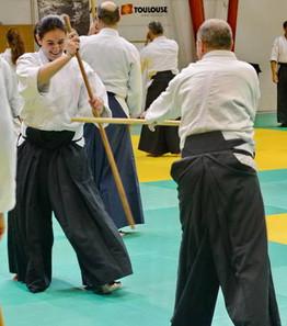 aikido distance worldwide training
