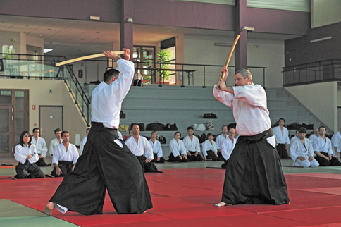 aikido weapons armes
