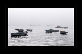 """""""Fog Rolls In"""" by Steven Rood"""