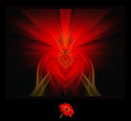 """Floral Love"" by Mel Carll"