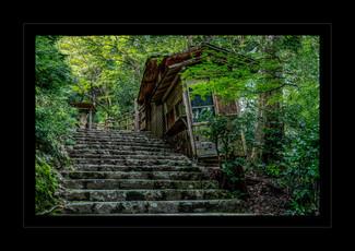 """Abandoned"" by Alan Raphael"