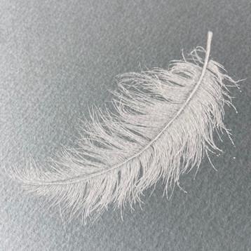 天使の落とし物