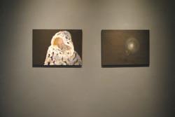 exhibition: Dawn