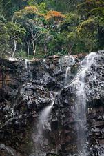 Silver-in-green,-Temurun-Waterfall,-Data