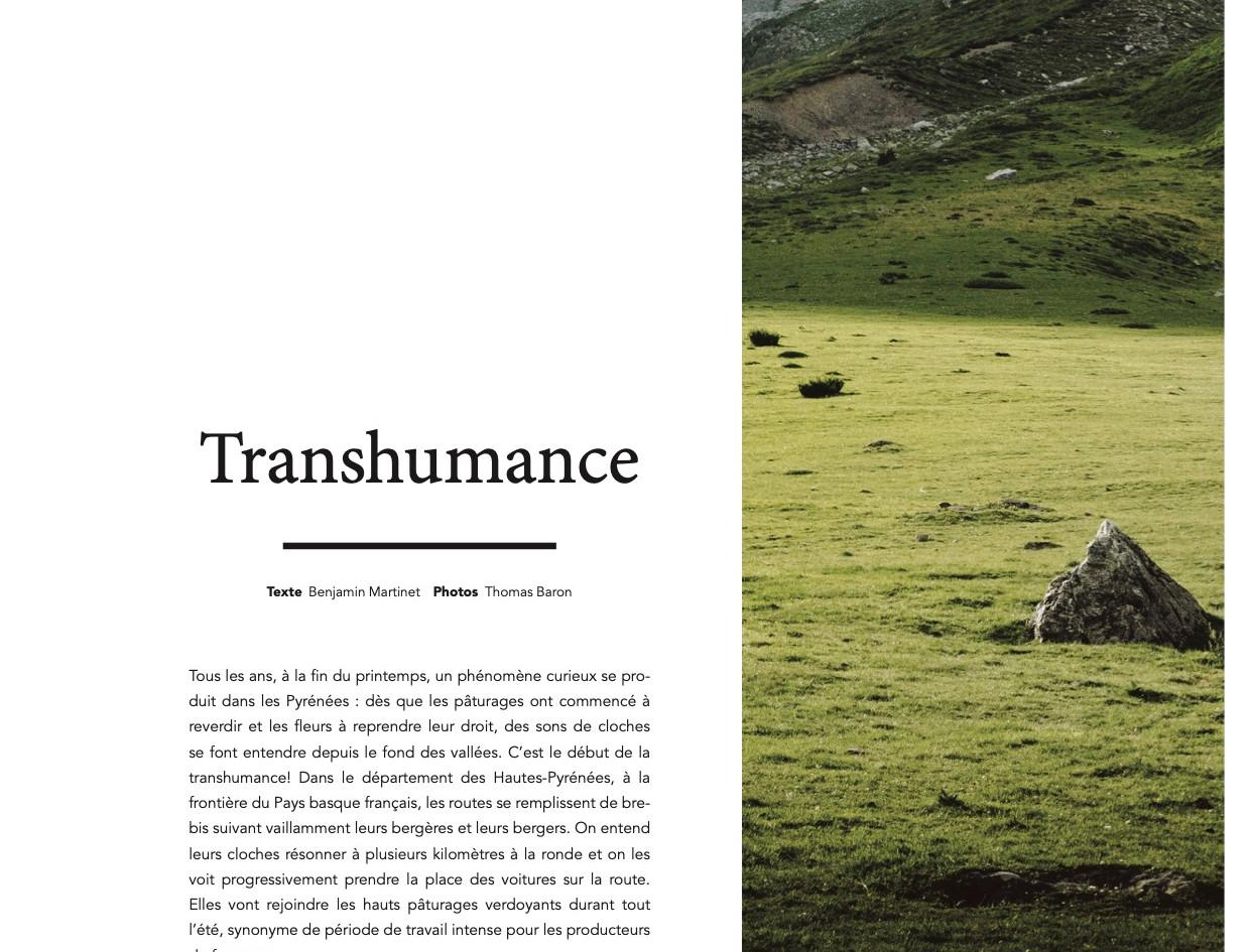 Dinnette 018 reportage transhumance 1