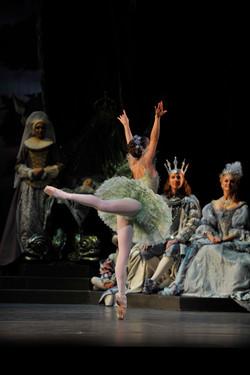The Sleeping Beauty fairy