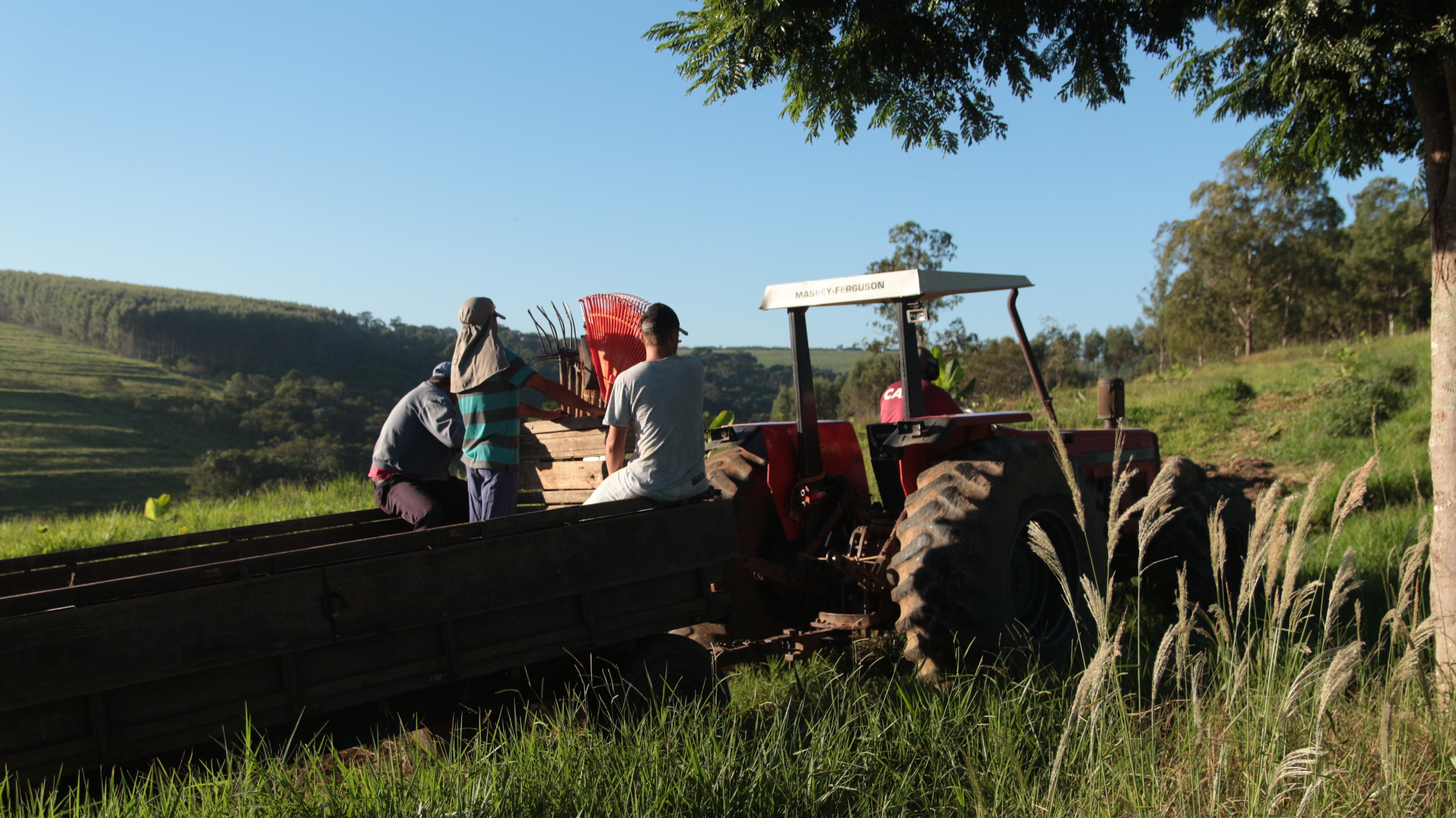 equipe da agrofloresta