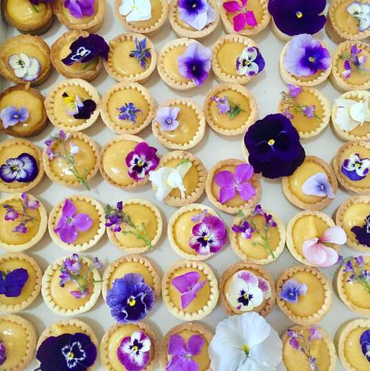Lemon tarts edible flowers.JPG