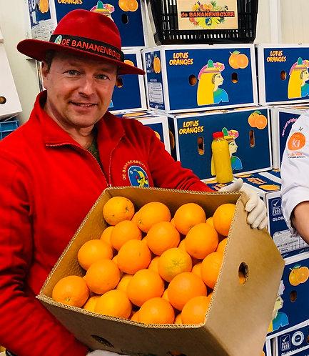 Press-orange Box 15 kilos 100 pcs
