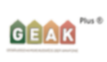 GEAK-Plus-Logo_edited.png