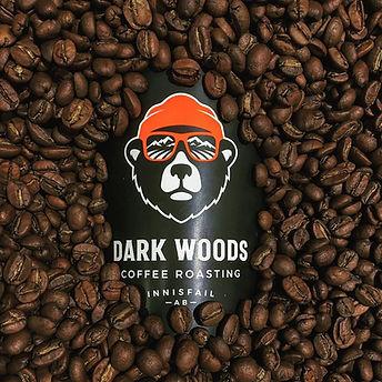 darkwoods.jpg