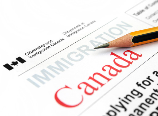 Canada welcomed 103,420 newcomers in the first half of 2020
