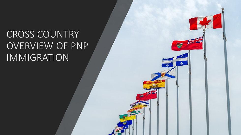 pnp overview.jpg