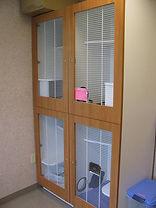 Cat Room 7.jpeg