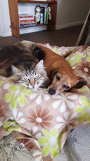 Gizmo & Maia