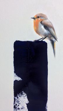 Robin (European)  11x17 Oil on Paper  2017