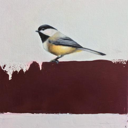 Chickadee  10x12  Oil on Canvas  2017