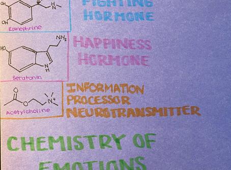 05/01/20 Chemistry of Emotions