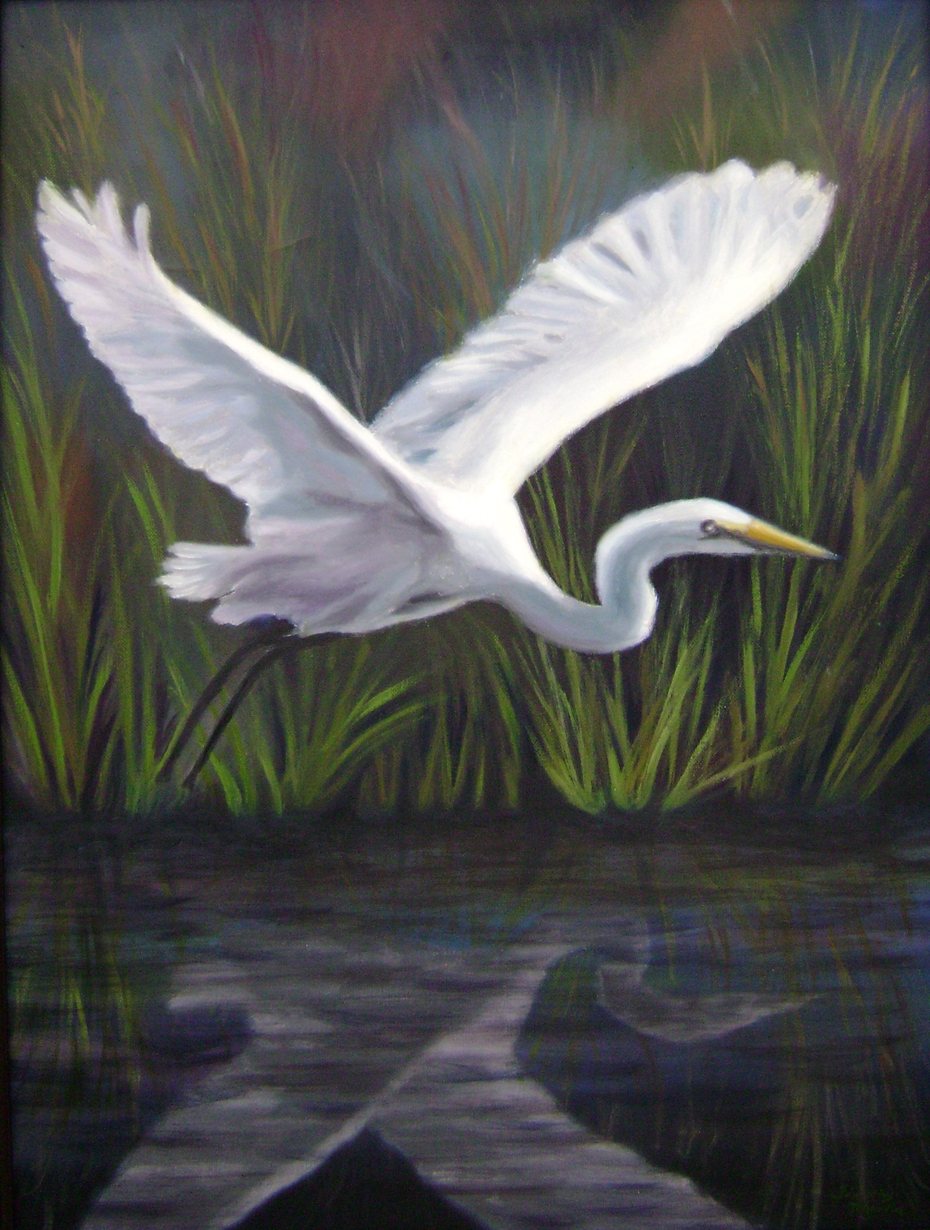 Egret in Reflection