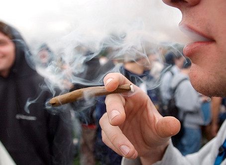 The Effects of Marijuana on the Teenage Brain
