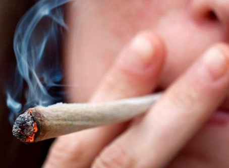 Marijuana And The Young Adult's Brain
