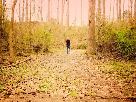 The Nature Effect: How getting outside benefits you and your troubled teen