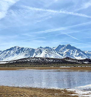 Higher Grounds Mgmt Mammoth Mountain Retreats