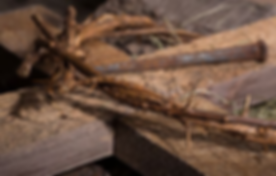 Crown of Thorns, Nail & Cross.png