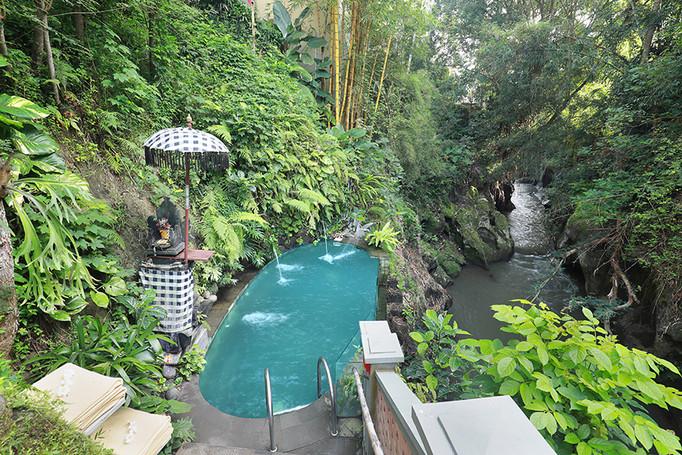 Sacred Natural Springs Water Pool