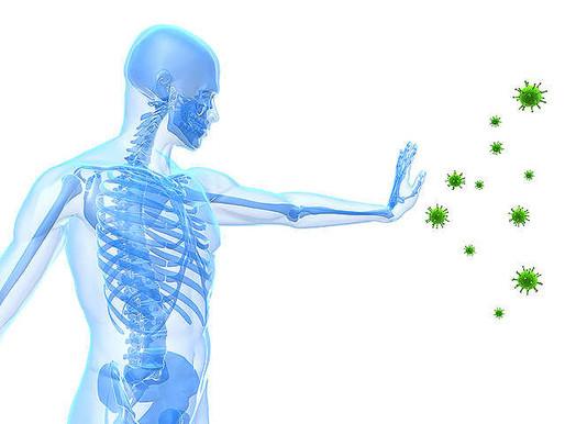 Korona vírus – z pohľadu fytoterapie
