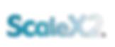 ScaleX2.png
