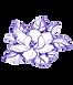 magnolia purple.png