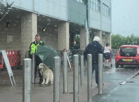 L'agent de sécurité devient viral grâce une photo de lui abritant un chien devant son magasin !