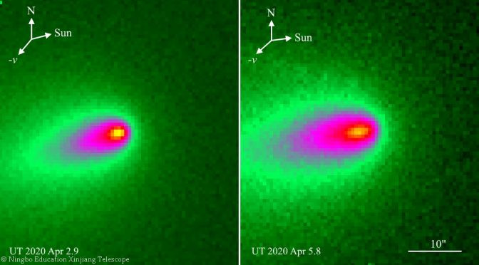 Les images de la comète Atlas réalisées début avril par des télescopes terrestres montraient un allongement de son noyau laissant présager de sa désintégration. © NEXTelescope